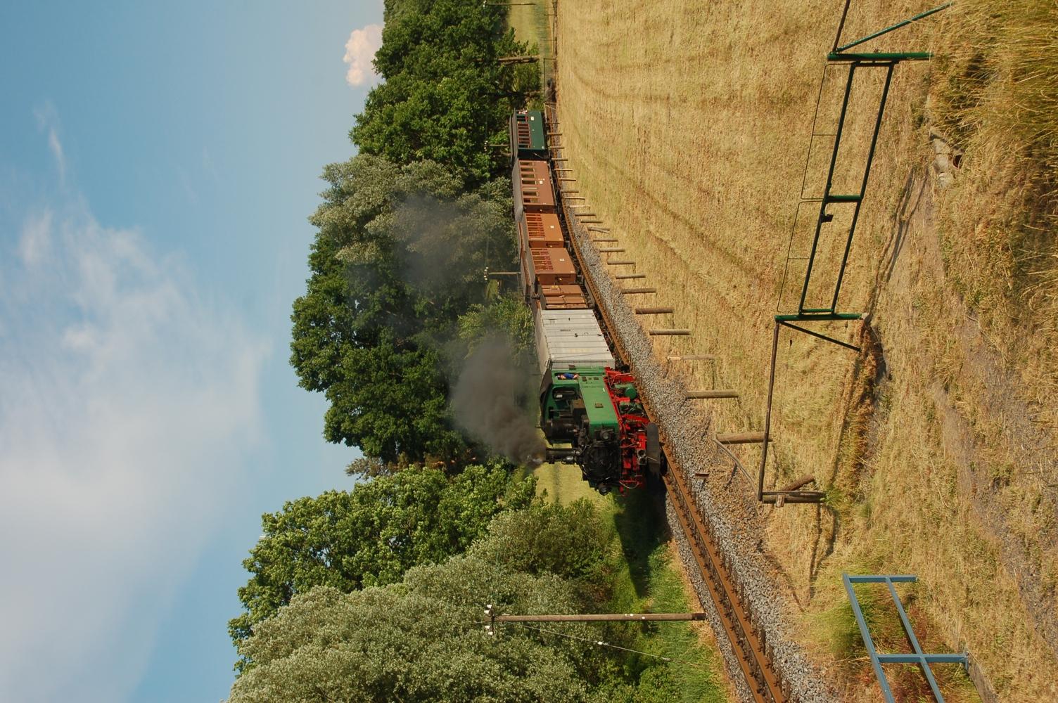 Dampfzug mit grüner Dampflok, grauem Gepäckwagen und braunen Personenwagen zwischen Feldern und Bäumen