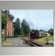 "Plakat - Friedewald ""Lößnitzgrundbahn"""